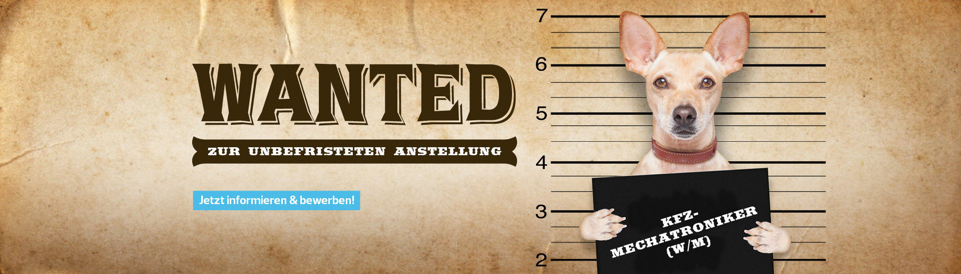 STE_web_header_wanted